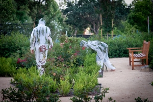 Evolution: A Walk [with Herbivores] Ternate Park, Stanford